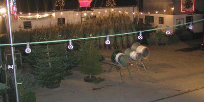 Freihoff Markus Weihnachtsbäume in Knappstockberg Gemeinde Kürten