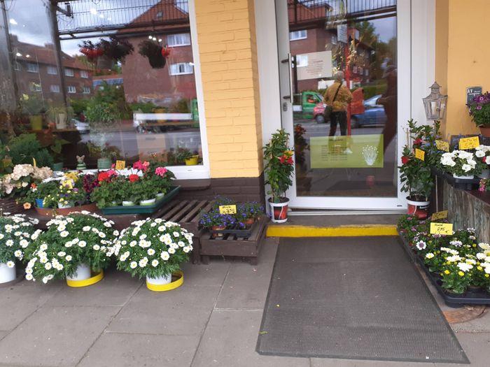 Blumen Bethge Hamburg