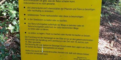 Naturschutzgebiet Hohes Elbufer in Geesthacht