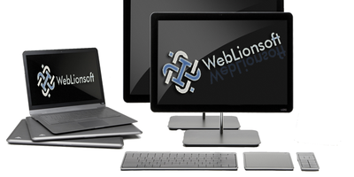 WebLionsoft-PhpKite GbR in Ettlingen