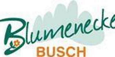 Blumenecke Busch in Wernigerode
