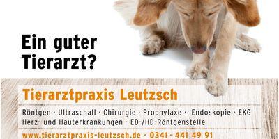 Tierarztpraxis Leipzig Leutzsch Regensburger & Haupt Tierärzte in Leipzig