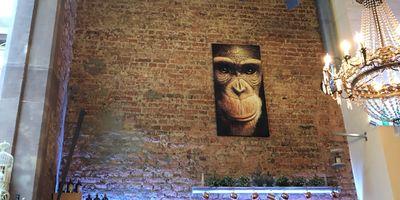 Monkey Garden in Freiburg im Breisgau