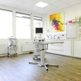 Tierarztpraxis Petra Morlock in Stuttgart