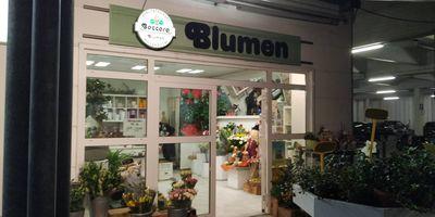 Blumen Baccara, im real,- in Braunschweig