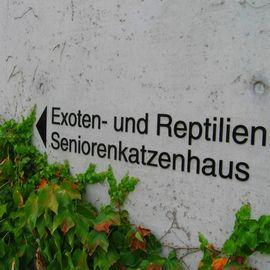 Tierheim Berlin in Berlin