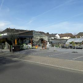 Rickenbach Blumengeschäft in Koblenz am Rhein
