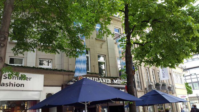 Gute Kuchen In Bonn Zentrum Golocal