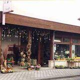 Blumen-Topp Nebel Bärbel Blumengeschäft in Lucka