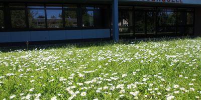 Grundschule am Wasserquell in Oldenburg in Holstein