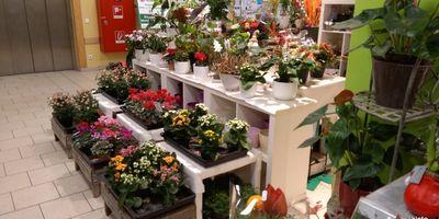 Blumen Ritter Floristik in Seevetal