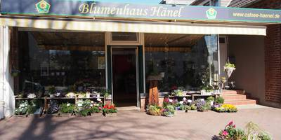 Blumenhaus Hänel in Lensahn