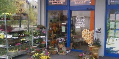 Ankes Blumenwerkstatt Inh. Anke Ewert in Demmin