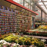 Gartencenter Augsburg GmbH & Co. KG Niederlassung in Bochum