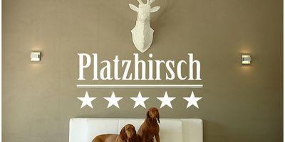 Hundehotel Platzhirsch - Essen in Essen