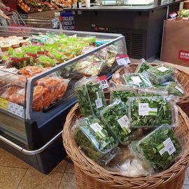 REWE Markt GmbH in Höxter