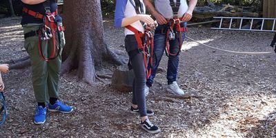 TreeRock - Abenteuerpark Hochsolling in Holzminden