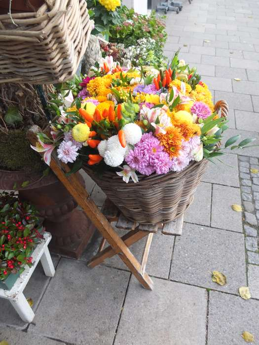 Die Blume Inh. Petra Schlosser Floristik - 3 Bewertungen - München ...