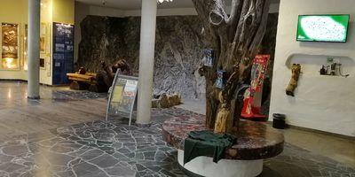 Höhlentheater in der Baumannshöhle in Blankenburg im Harz