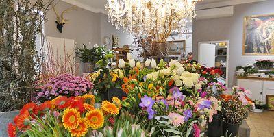 Blumenreich -Floristmeister Robert Teckhaus- in Siegen