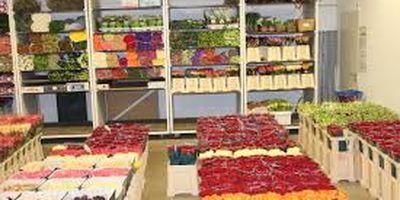 Meij Berend van der Blumengroßhandel in Ay Gemeinde Senden