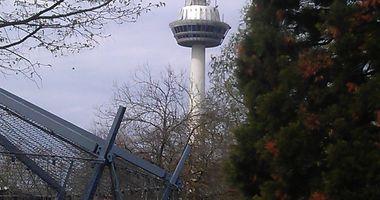 Stadtpark Mannheim GmbH Luisenpark u. Herzogenriedpark in Mannheim