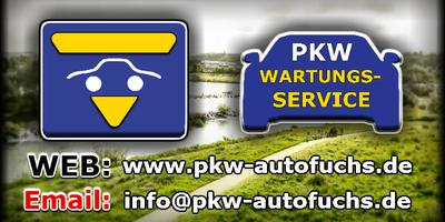 Autofuchs Igor Pavlov in Hattingen an der Ruhr