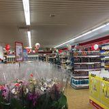 Sonderpreis Baumarkt in Hameln