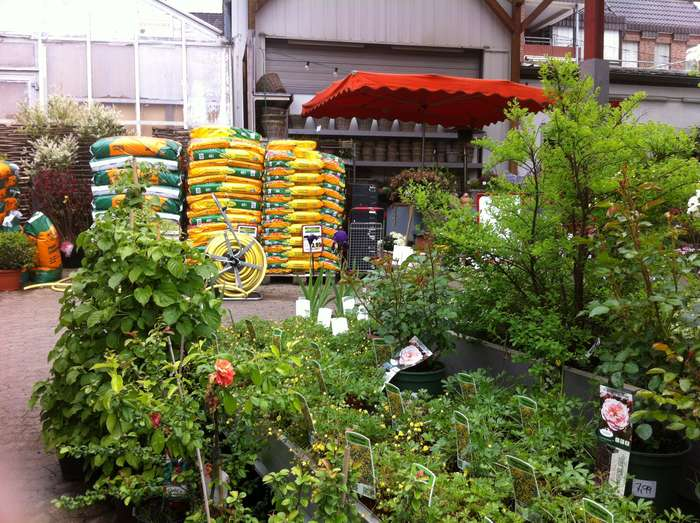 Gute Gartnereien In Hameln Golocal