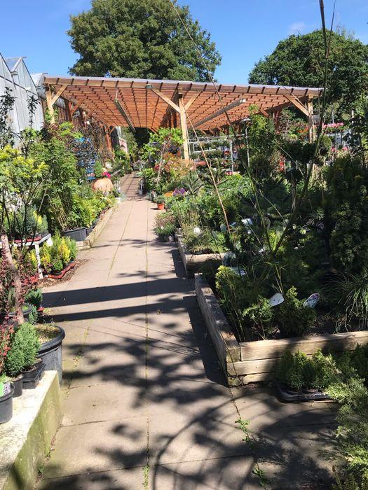 Bilder Und Fotos Zu Gartencenter Neumann Gmbh In Hameln Hefehof