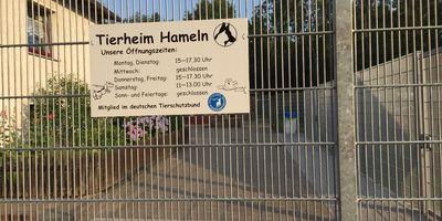 Tierschutz Hameln in Hameln