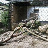 Tierpark Wismar e.V. in Wismar in Mecklenburg