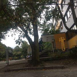 BIP Grundschule Berlin-Pankow in Berlin