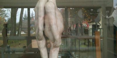 Zeitkunstgalerie in Born am Darß