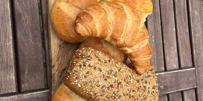 Janke Landbäckerei in Flecken Zechlin Stadt Rheinsberg