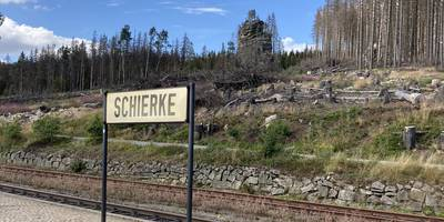 Harzer Schmalspurbahnen GmbH Bahnhof Schierke in Wernigerode