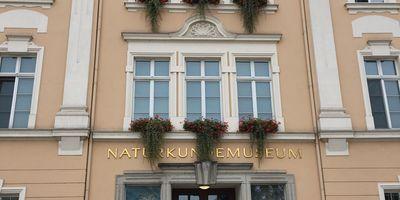 Senkenberg Museum für Naturkunde in Görlitz