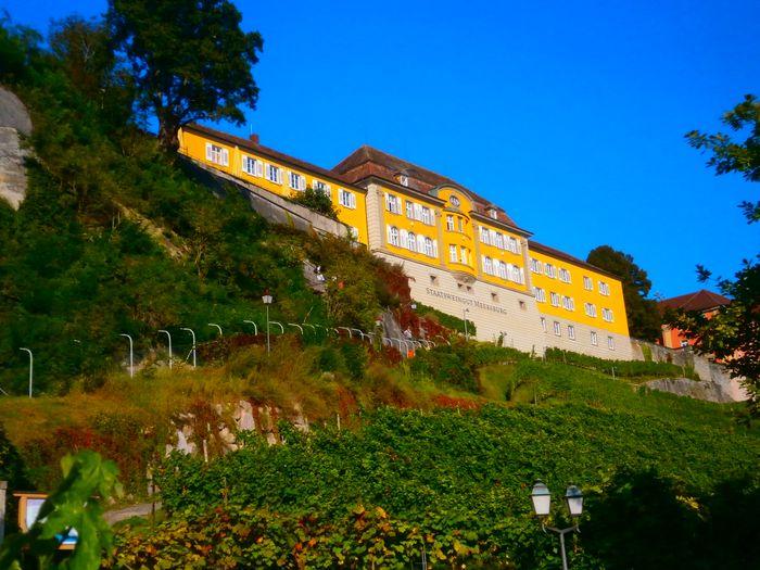 Gutsschänke Staatsweingut Meersburg - 3 Bewertungen - Meersburg ...