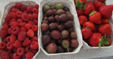 Obstbau Mauch in Vaihingen an der Enz