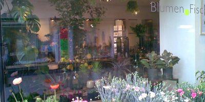 Blumen-Fischer GbR in Stuttgart