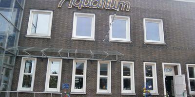 Aquarium Wilhelmshaven Bullermeck GmbH in Wilhelmshaven