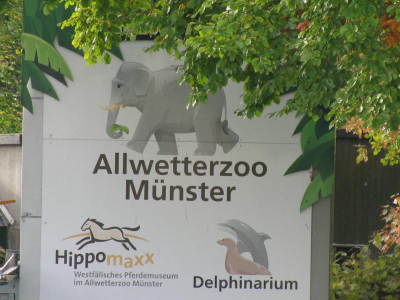 Westfalischer Zoologischer Garten Munster Gmbh Allwetterzoo 48161 Munster Sentrup Offnungszeiten Adresse Telefon
