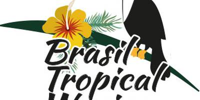 Brasil Tropical Waxing in Bremen