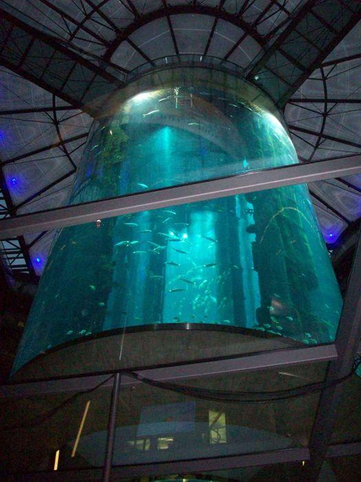 bewertung f r sea life center und aqua dome von timeless. Black Bedroom Furniture Sets. Home Design Ideas