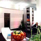 AP Immobilien GmbH - Ihr IVD-Immobilienmakler aus Mainz! in  Mainz