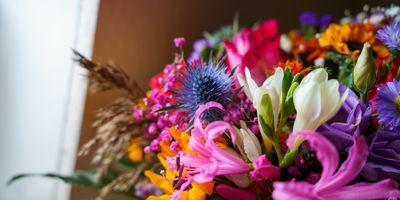 Blumen Kluge Annegret Kluge in Stuhr