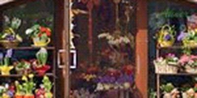 Blumenhaus Ahner Euro Florist in Stollberg im Erzgebirge