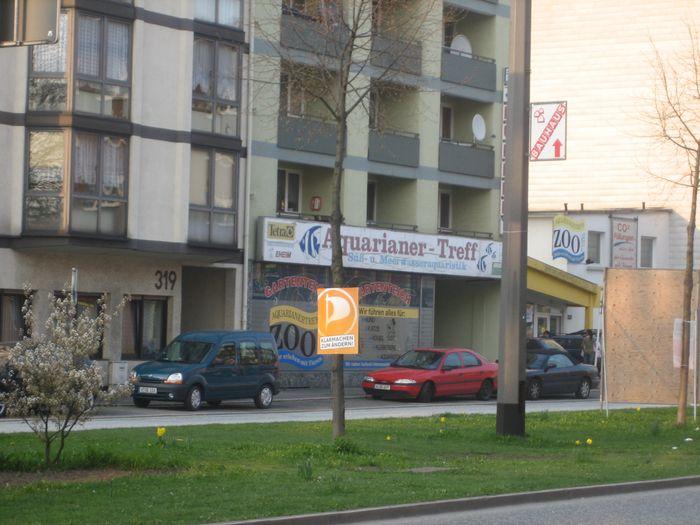 singletreff wuppertal Tanzschule wuppertal, wuppertal tanzschule, tanzparty, standard/latein singeltanz in oberhausen, tanzpartner gesucht mülheim ruhr, singletreff duisburg.
