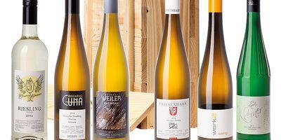 Wein-Kiste Marketing- & Versandhandelsgesellschaft mbH in Geisenheim im Rheingau