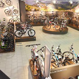 Bild zu Fahrrad-XXL Franz in Mülheim-Kärlich